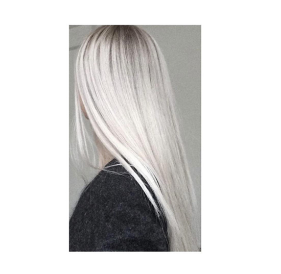 Grey Olaplex at Blue Tit